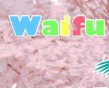 WaifuAcademy0.80B安卓汉化版