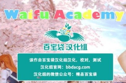 WaifuAcademy0.80B安卓汉化版截图2